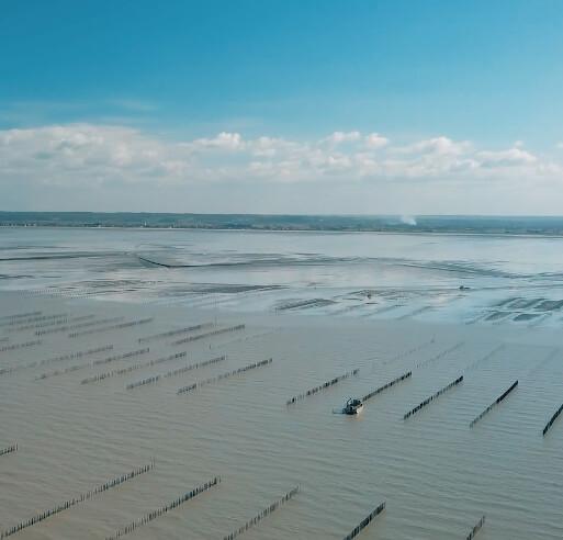 VIdémo, prise de vue aérienne par drone à Brest, nos réalisations : Cultimer